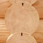 Выбор древесины: обращаем внимание