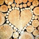 Хранение запаса дров в дачных условиях